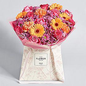 Flowers Plants Online