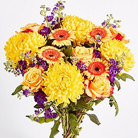 Mother's Day earlybird flower offer