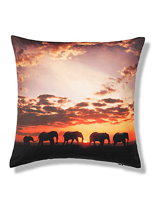 Elephant Print Cushion Home