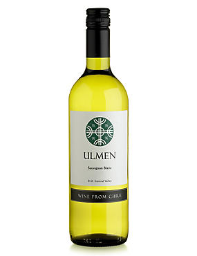 Ulmen Sauvignon Blanc - Case of 6