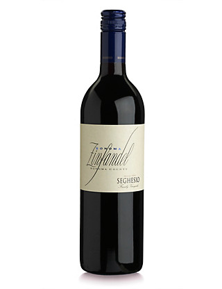 Seghesio Zinfandel - Case of 6 Wine