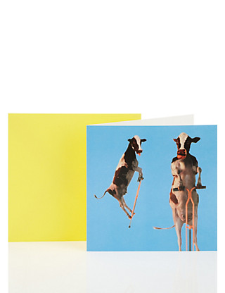 Pogo Cows Blank Greetings Card Home