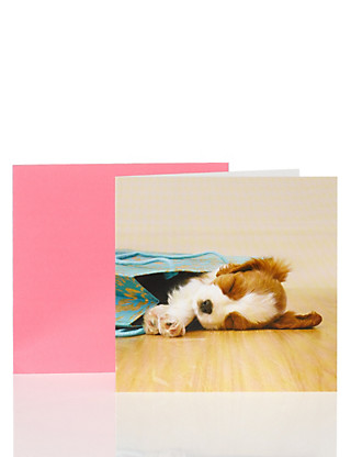 Photographic Puppy Card Home