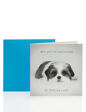 Photographic Dog Get Well Card