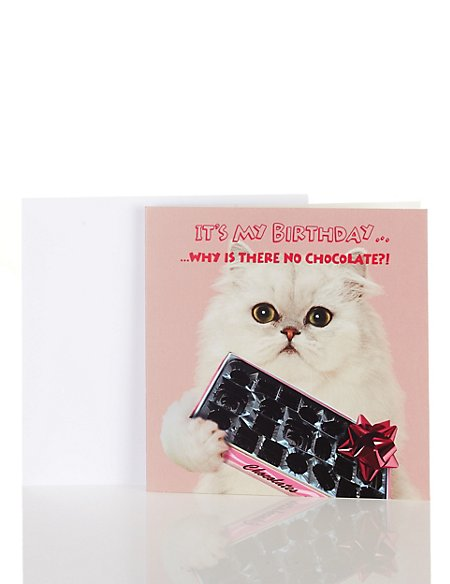Fun Cat Birthday Card
