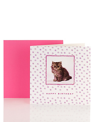 Cute Cat Blank Card Home