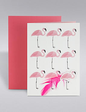 Flamingo Feathers Card