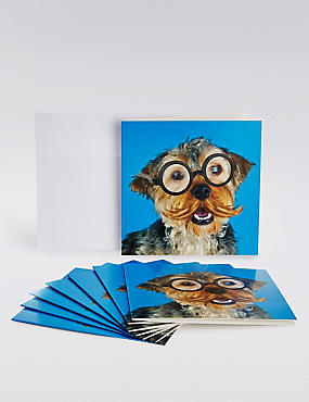 Blue Dog Multipack Cards