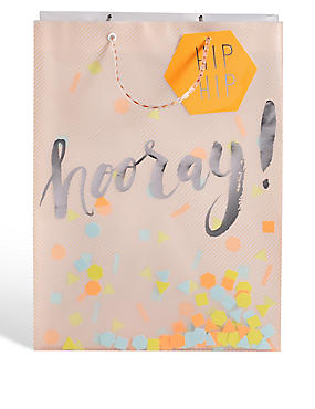 Translucent Confetti Large Gift Bag, NO COLOUR, catlanding