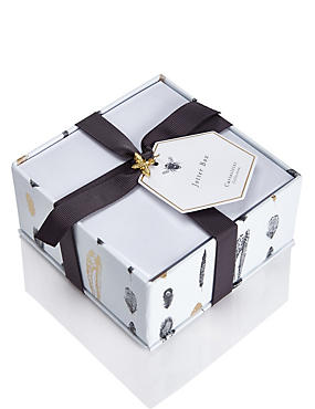 Curiosities Collection Jotter Box Note Paper