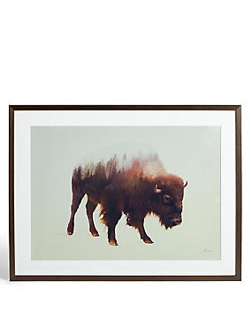 Bison Wall Art