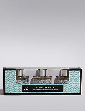 Coastal Walk Trio Diffuser