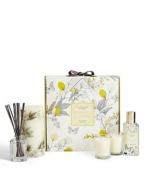 Grapefruit & Ginger Ultimate Gift Set