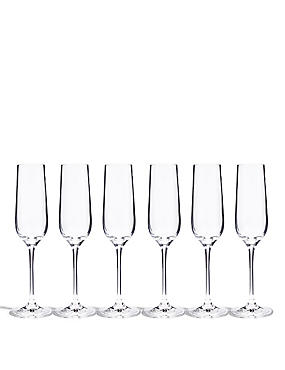 6 Accent Champagne Flutes