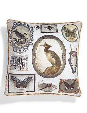Curiosities Print Cushion