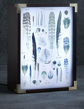 Light Box Table Lamp