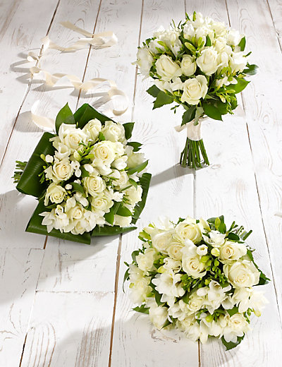 How to propagate bridal bouquet plant : White rose freesia wedding flowers collection m s