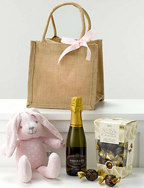 Baby Girl Celebration Gift Bag