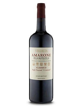 Amarone della Valpolicella Magnum - Single Bottle