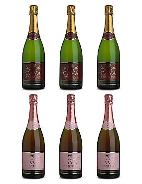 Party Fizz - Case of 6