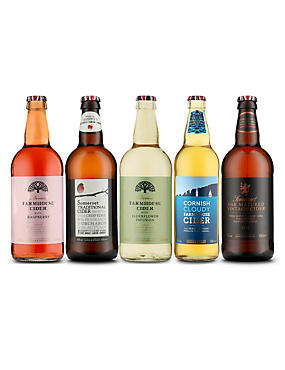 British Cider Selection - Case of 20