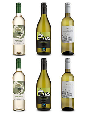 Pinot Grigio Favourites - Case of 6