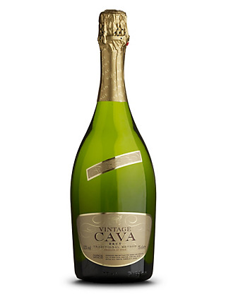Vintage Cava - Case of 6 Wine