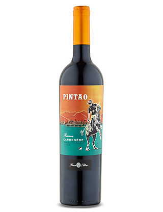 Pintao Reserva Carmenere - Case of 6 Wine
