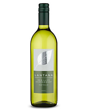 Lantana Semillon Chardonnay - Case of 6