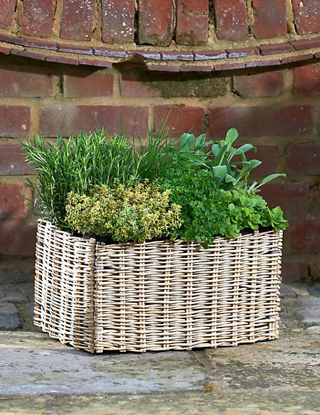 Herb Patio Basket