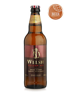 Welsh Golden Ale - Case of 20