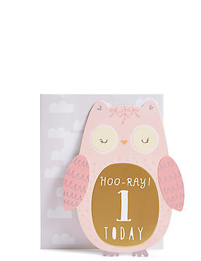 Birthday cards happy birthday greeting cards ms age 1 owl birthday card m4hsunfo