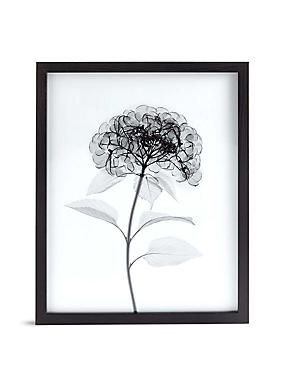 Wall Art Wall Stickers Canvas Art Framed Pictures M S