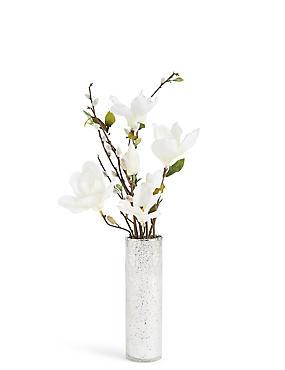 Magnolia & Pussywillow in Mercury Vase, CREAM, catlanding