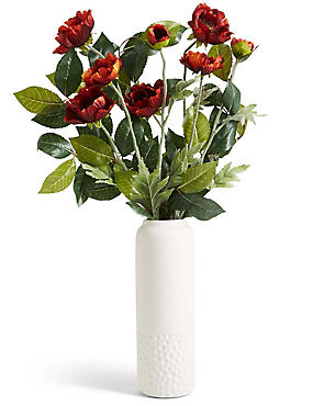 Wild Poppy in Ceramic Vase