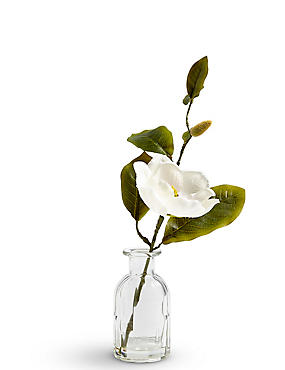Magnolia in Bottle Vase