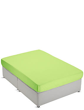 Non-Iron Pure Egyptian Cotton Fitted Sheet, LIME, catlanding