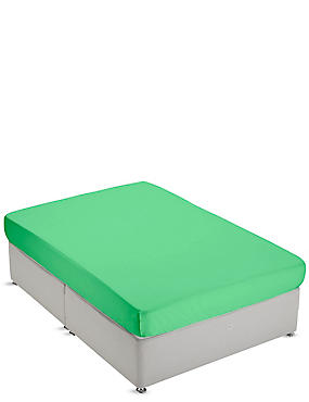 Non-Iron Pure Egyptian Cotton Fitted Sheet, GREEN, catlanding
