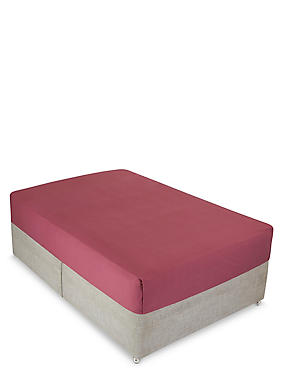 Non-Iron Pure Egyptian Cotton Deep Fitted Sheet, RASPBERRY MIX, catlanding