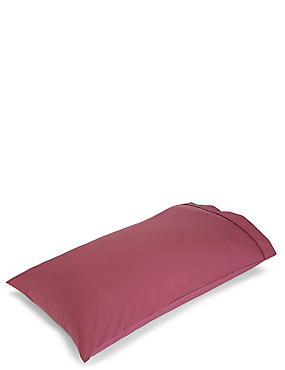 Pure Egyptian Cotton 230 Thread Count Standard Pillowcase with StayNEW™, RASPBERRY MIX, catlanding