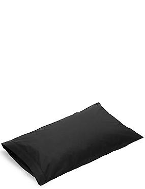 Pure Egyptian Cotton 230 Thread Count Standard Pillowcase with StayNEW™, BLACK, catlanding