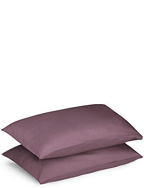 2 Pack Percale Pillowcase, DARK GRAPE, catlanding