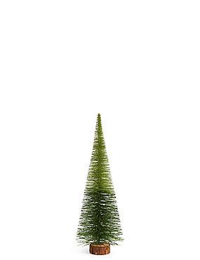 Large Green Ombre Bristle Tree, , catlanding