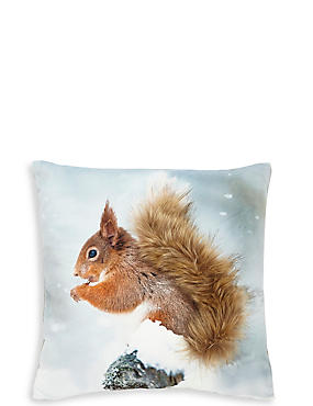 Mini Squirrel Cushion