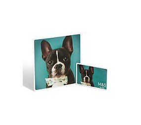 Dog Photo Gift Card