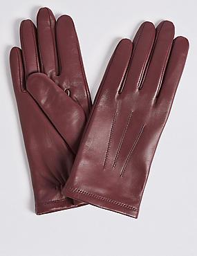 Leather Gloves, DAMSON, catlanding