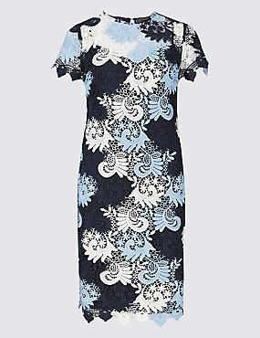 PETITE Lace Short Sleeve Bodycon Dress , MULTI, catlanding