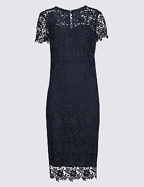 PETITE Lace Short Sleeve Bodycon Midi Dress