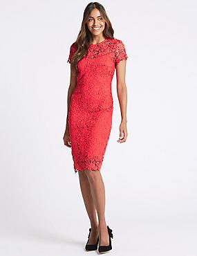 Lace Sheath Short Sleeve Bodycon Midi Dress, CORAL, catlanding