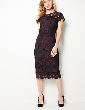 PETITE Lace Cap Sleeve Bodycon Midi Dress , PLUM, catlanding